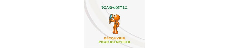 AIDE au DIAGNOSTIC