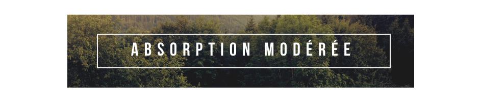 ABSORPTION MODÉRÉE